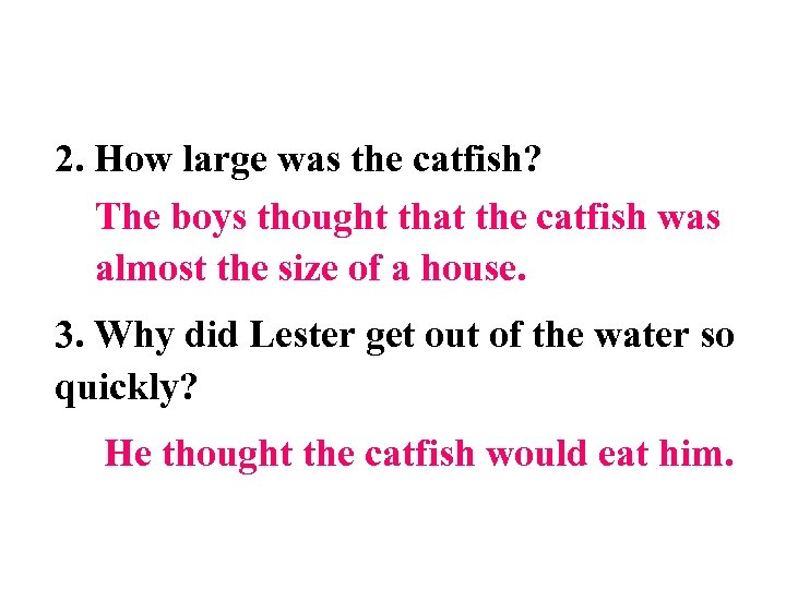 2. How large was the catfish? The boys thought that the catfish was almost