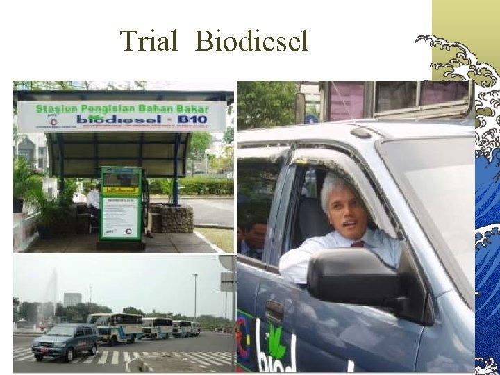 Trial Biodiesel