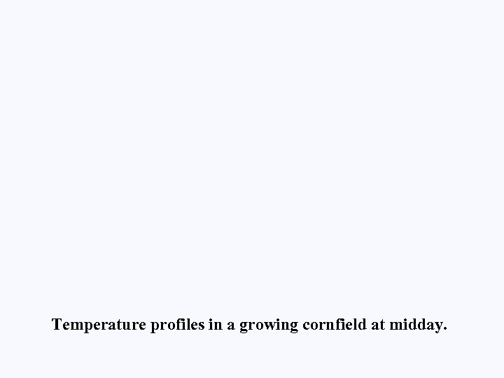 Temperature profiles in a growing cornfield at midday.