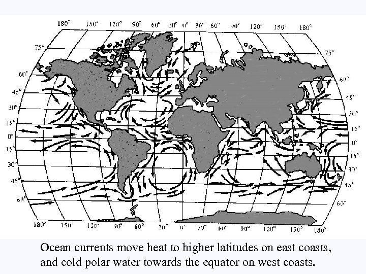 Ocean currents move heat to higher latitudes on east coasts, and cold polar water