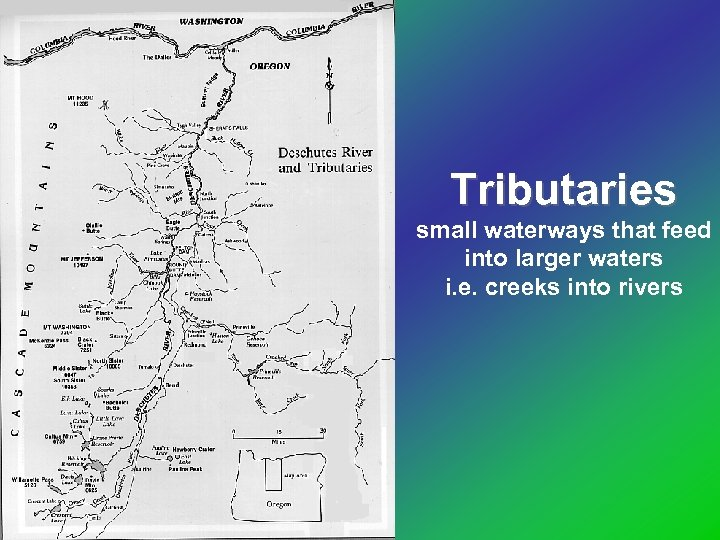Tributaries small waterways that feed into larger waters i. e. creeks into rivers
