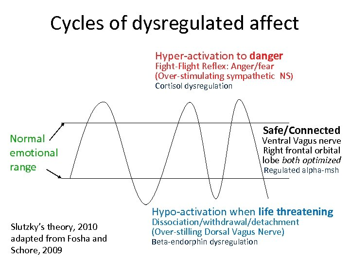 Cycles of dysregulated affect Hyper-activation to danger Fight-Flight Reflex: Anger/fear (Over-stimulating sympathetic NS) Cortisol
