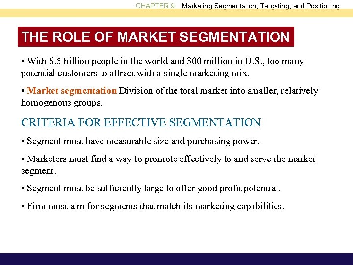 requirements for effective segmentation with examples