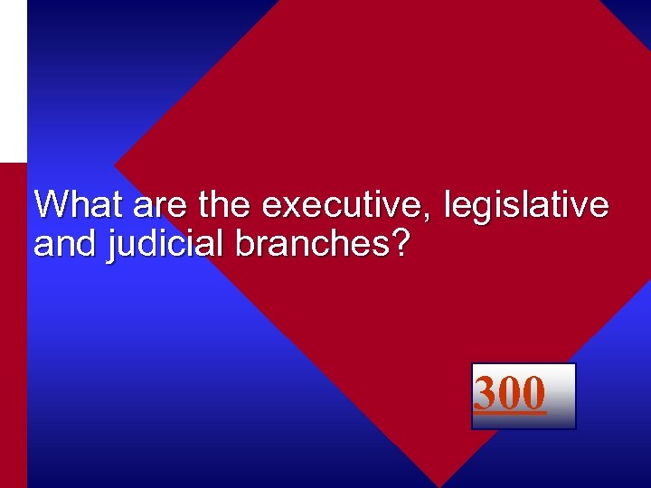 What are the executive, legislative and judicial branches? 300