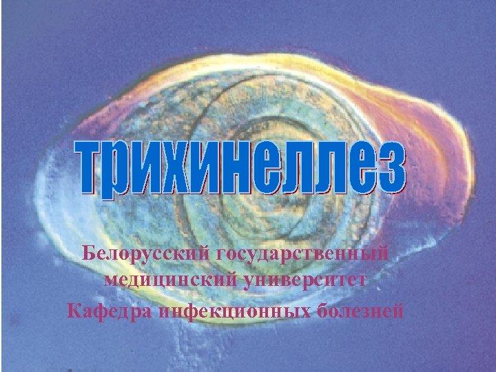 Белорусский государственный медицинский университет Кафедра инфекционных болезней