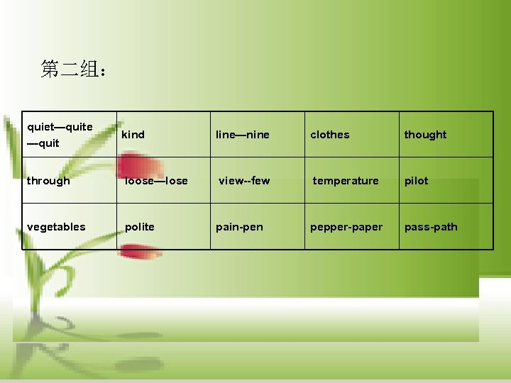 第二组: quiet—quite —quit kind line—nine clothes thought through loose—lose view--few temperature pilot vegetables polite