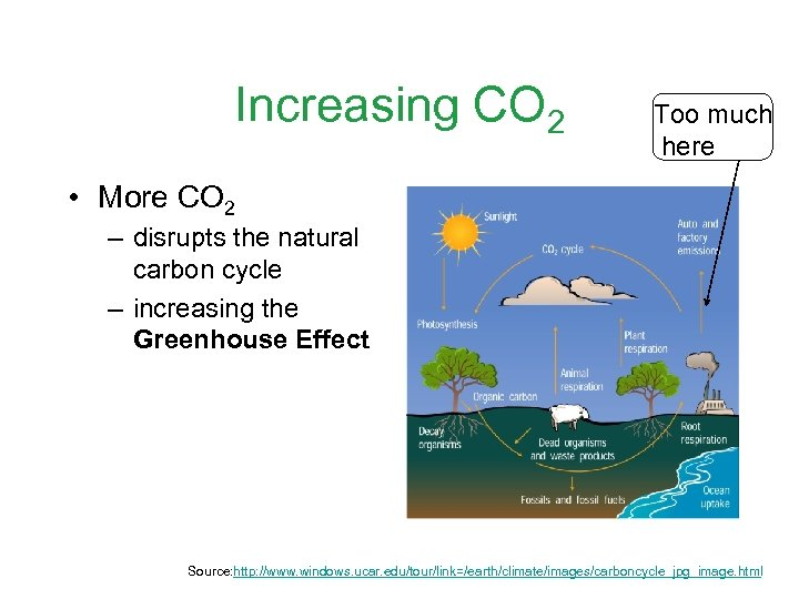 Increasing CO 2 Too much here • More CO 2 – disrupts the natural