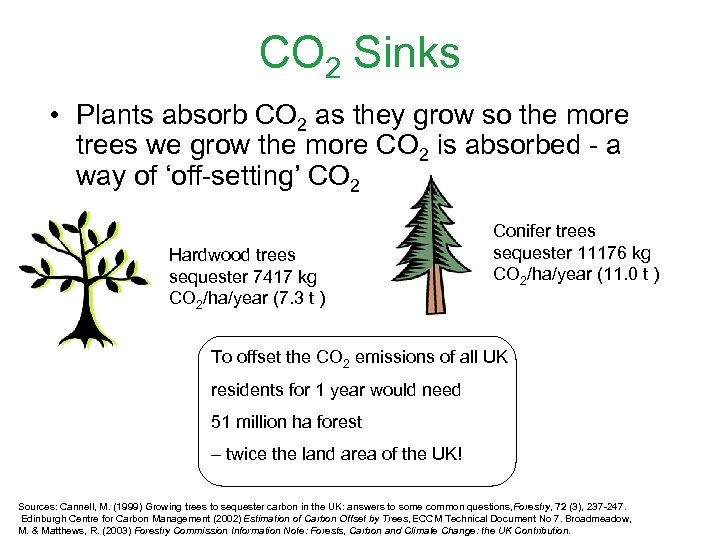 CO 2 Sinks • Plants absorb CO 2 as they grow so the more