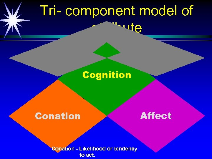 Tri- component model of attribute Cognition Conation - Likelihood or tendency to act. Affect