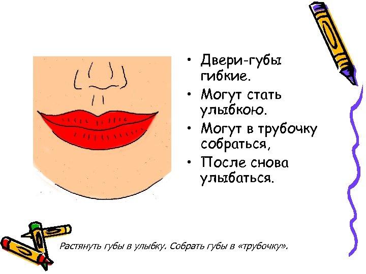 • Двери-губы гибкие. • Могут стать улыбкою. • Могут в трубочку собраться, •