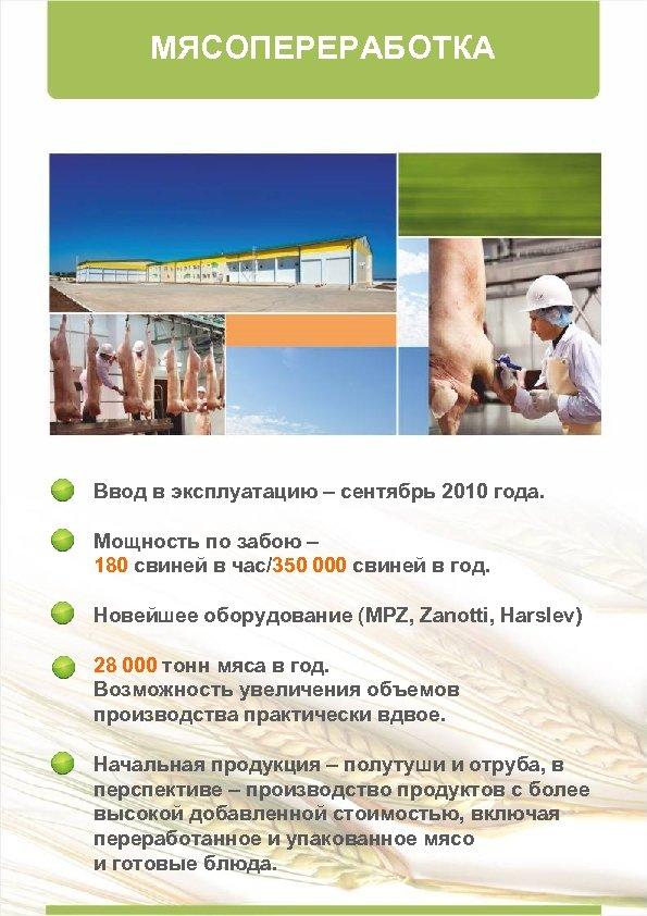 МЯСОПЕРЕРАБОТКА Ввод в эксплуатацию – сентябрь 2010 года. Мощность по забою – 180 свиней