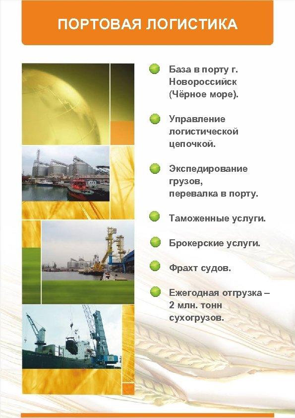 ПОРТОВАЯ ЛОГИСТИКА База в порту г. Новороссийск (Чёрное море). Управление логистической цепочкой. Экспедирование грузов,