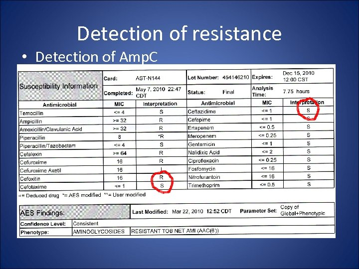 Detection of resistance • Detection of Amp. C