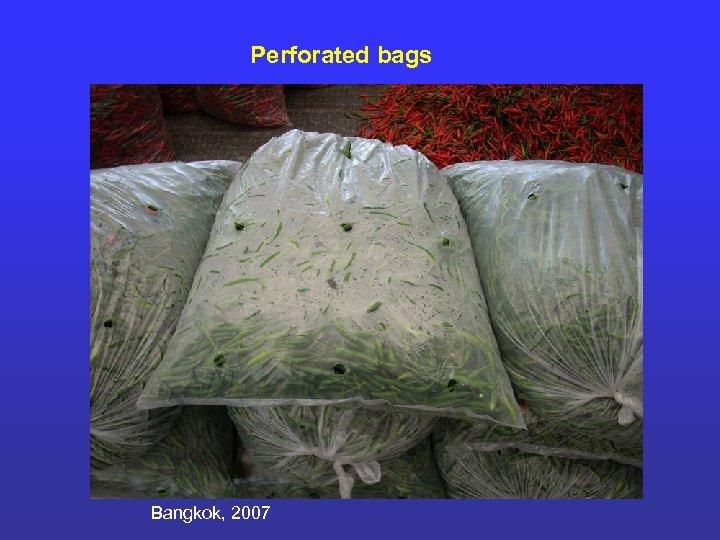Perforated bags Bangkok, 2007