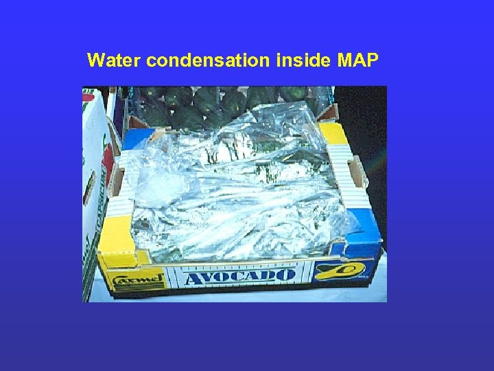 Water condensation inside MAP