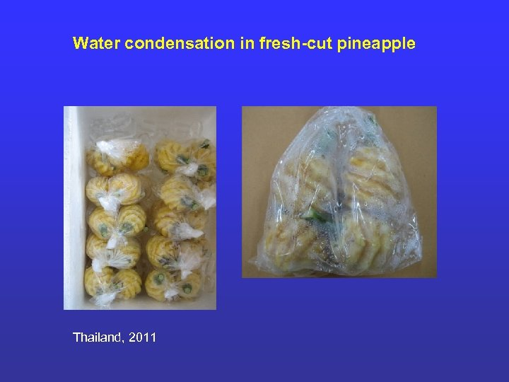 Water condensation in fresh-cut pineapple Thailand, 2011