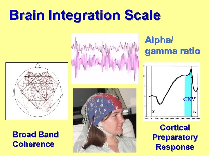 Brain Integration Scale Alpha/ gamma ratio Broad Band Coherence Cortical Preparatory Response