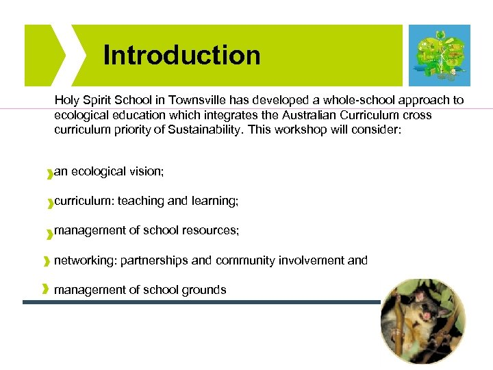 Introduction Holy Spirit School in Townsville has developed a whole-school approach to ecological education