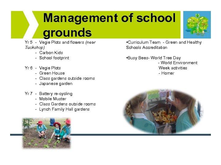 Management of school grounds Yr 5 - Vegie Plots and flowers (near Tuckshop) -
