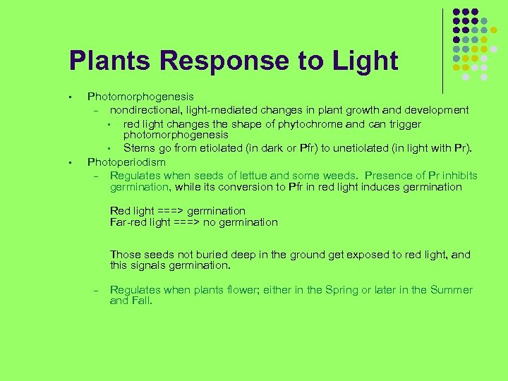 Plants Response to Light • • Photomorphogenesis – nondirectional, light-mediated changes in plant growth