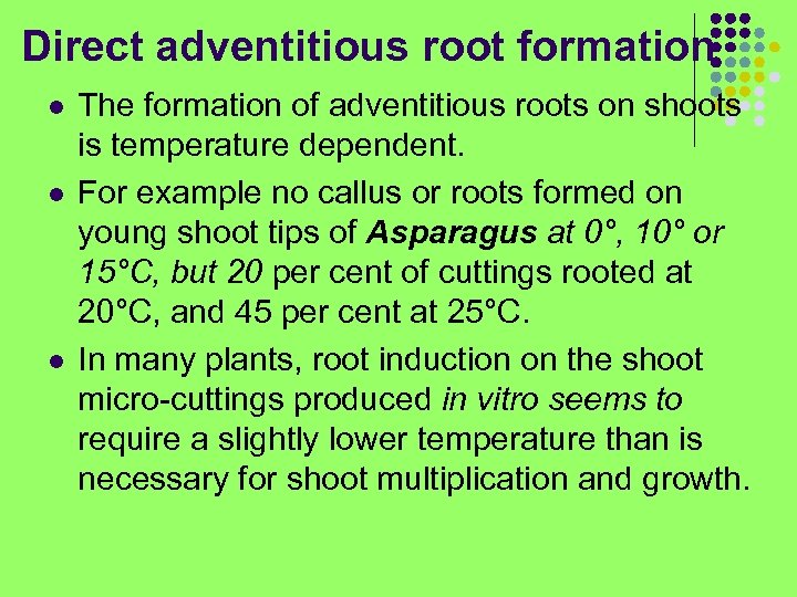 Direct adventitious root formation l l l The formation of adventitious roots on shoots