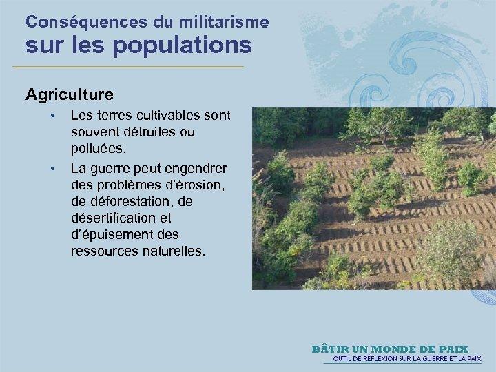 Conséquences du militarisme sur les populations Agriculture • • Les terres cultivables sont souvent