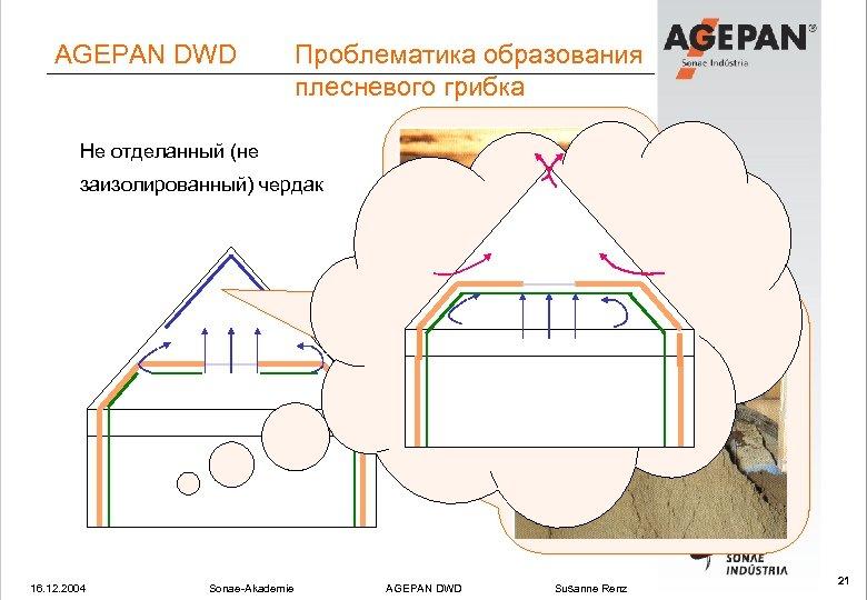 AGEPAN DWD Проблематика образования плесневого грибка Не отделанный (не заизолированный) чердак 16. 12. 2004