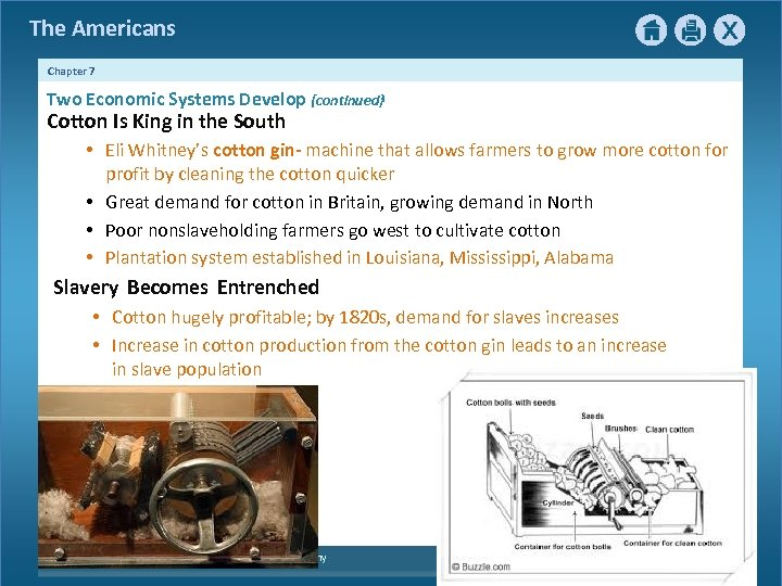The Americans Chapter 7 Two Economic Systems Develop {continued} Cotton Is King in the