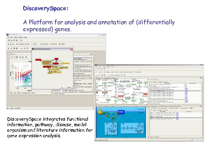 Discovery. Space: A Platform for analysis and annotation of (differentially expressed) genes. Discovery. Space