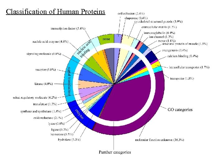 Classification of Human Proteins