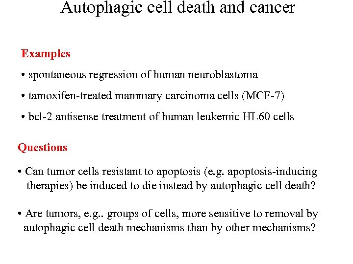 Autophagic cell death and cancer Examples • spontaneous regression of human neuroblastoma • tamoxifen-treated