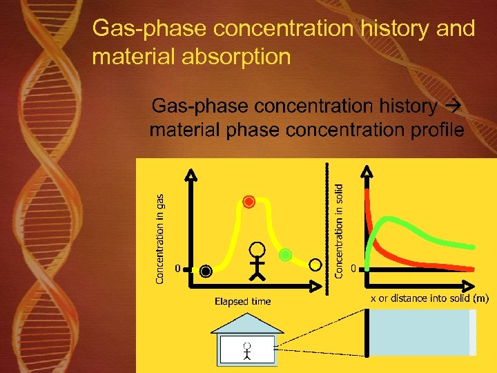 Gas-phase concentration history and material absorption