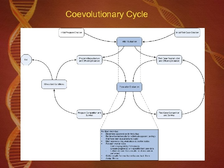 Coevolutionary Cycle