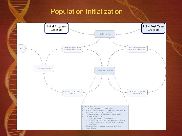 Population Initialization