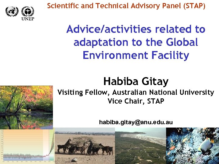 Scientific and Technical Advisory Panel (STAP) Advice/activities related to adaptation to the Global Environment