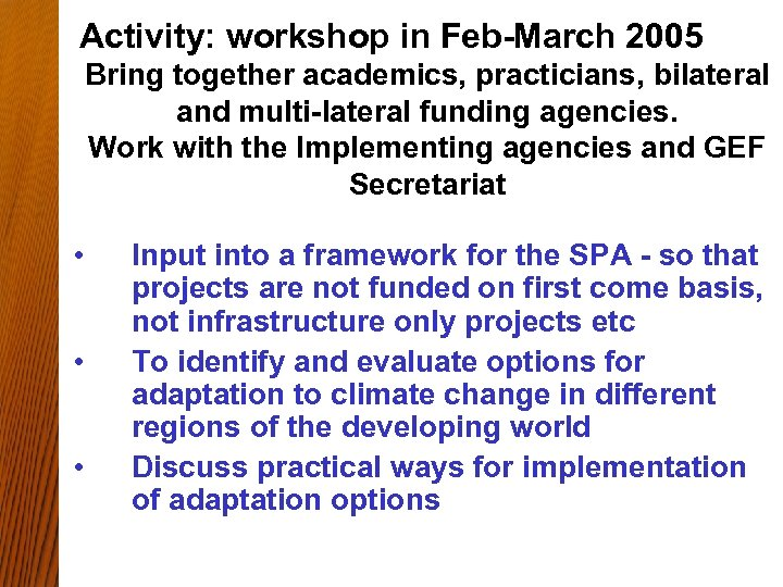 Activity: workshop in Feb-March 2005 Bring together academics, practicians, bilateral and multi-lateral funding agencies.