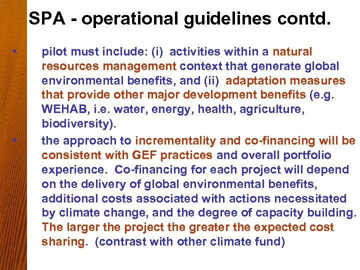 SPA - operational guidelines contd. • • pilot must include: (i) activities within a