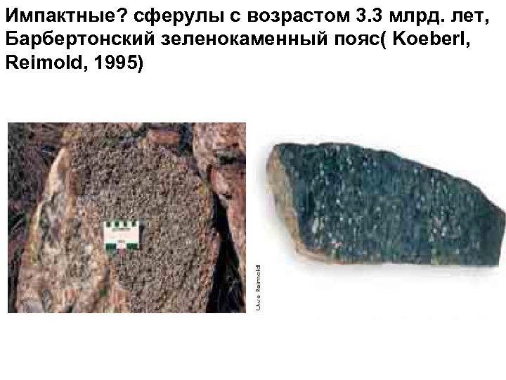 Импактные? сферулы с возрастом 3. 3 млрд. лет, Барбертонский зеленокаменный пояс( Koeberl, Reimold, 1995)