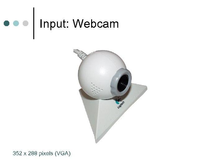 Input: Webcam 352 x 288 pixels (VGA)
