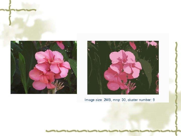 Image size: 2 MB, mnp: 30, cluster number: 5
