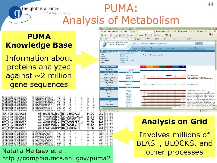 PUMA: Analysis of Metabolism 44 PUMA Knowledge Base Information about proteins analyzed against ~2