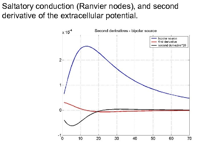 Saltatory conduction (Ranvier nodes), and second derivative of the extracellular potential.