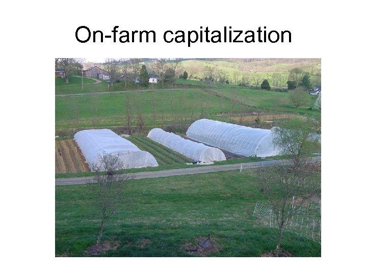 On-farm capitalization