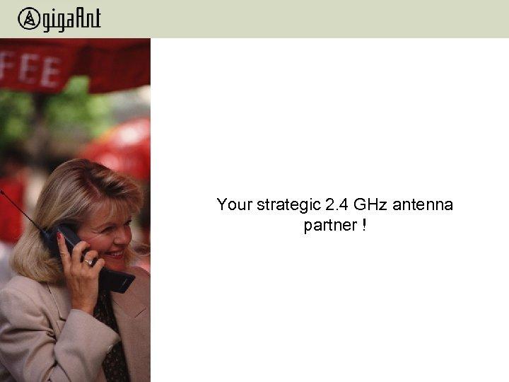 Your strategic 2. 4 GHz antenna partner !