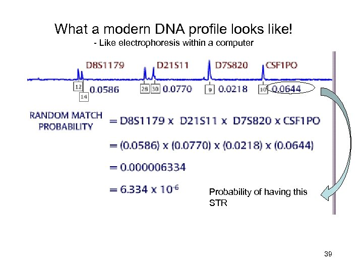 What a modern DNA profile looks like! - Like electrophoresis within a computer Probability