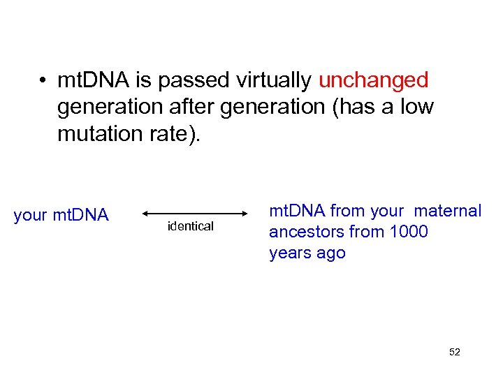 • mt. DNA is passed virtually unchanged generation after generation (has a low
