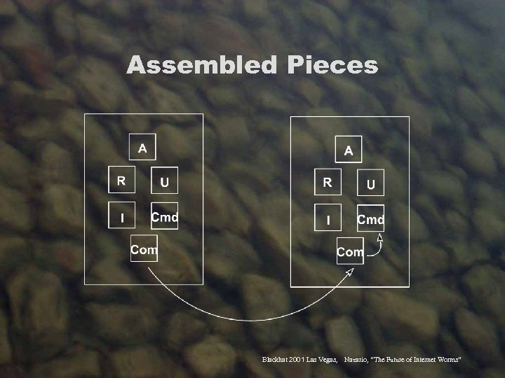 "Assembled Pieces Blackhat 2001 Las Vegas, Nazario, ""The Future of Internet Worms"""