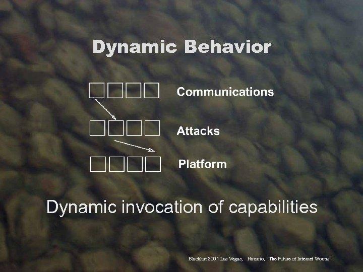 "Dynamic Behavior Dynamic invocation of capabilities Blackhat 2001 Las Vegas, Nazario, ""The Future of"