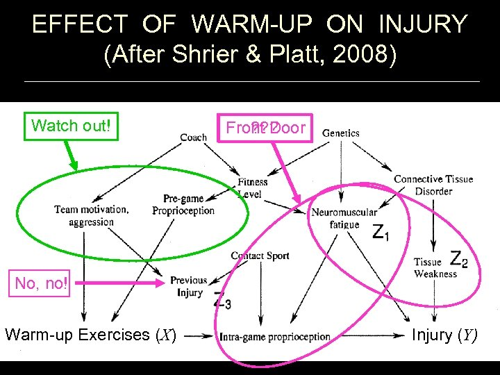EFFECT OF WARM-UP ON INJURY (After Shrier & Platt, 2008) Watch out! ? ?