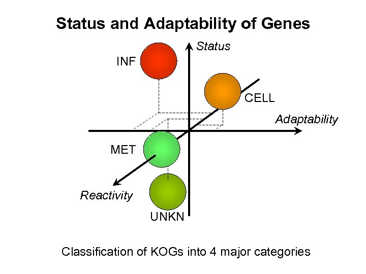 Status and Adaptability of Genes Status INF CELL Adaptability MET Reactivity UNKN Classification of
